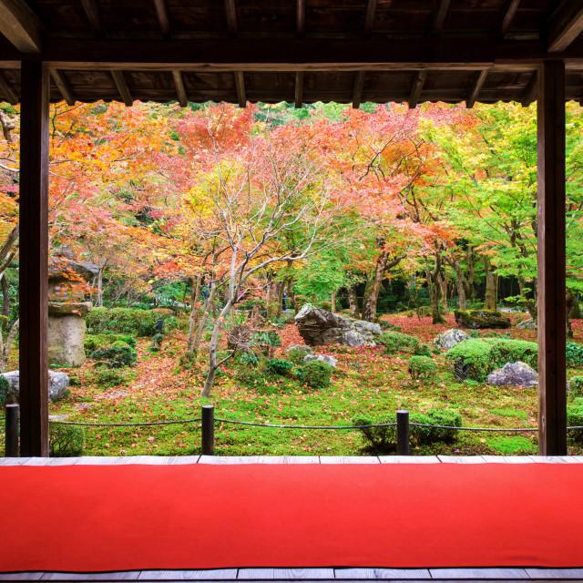 """Japanese garden in autumn at Enkoji, Kyoto"" stock image"