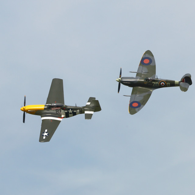"""""""Spitfire and Mustang"""" stock image"""