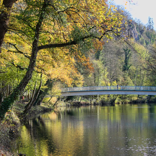 """Bridge over the Derwent"" stock image"