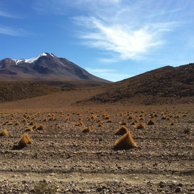 """""""Mountains in the Bolivian Desert"""" stock image"""