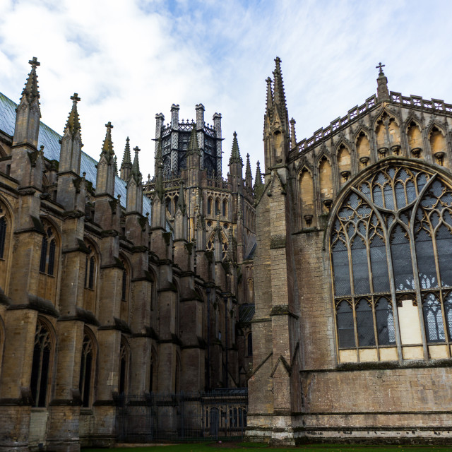 """""""View of Ely Cathederal"""" stock image"""