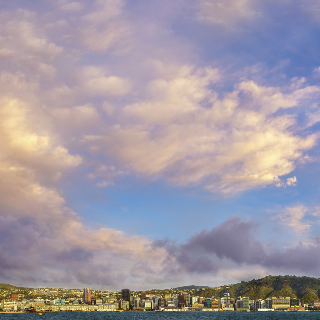 """Sunrise over Wellington, New Zealand"" stock image"