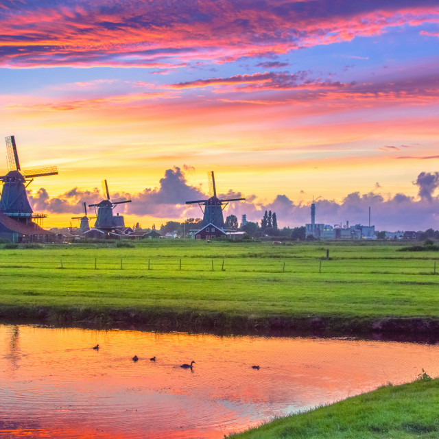 """""""Traditional village at sunset, with dutch windmills, bridge and river on Zaanse Schans, Holland, Netherlands."""" stock image"""