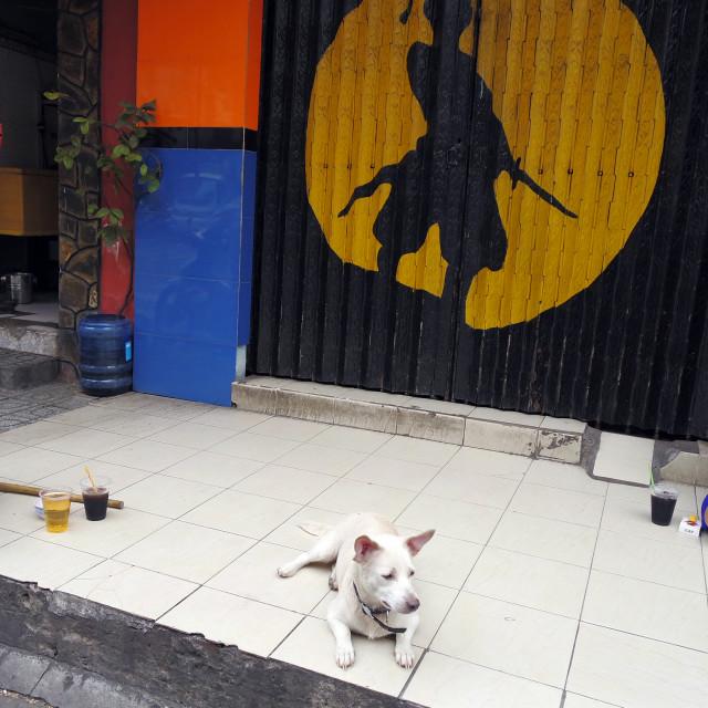 """Street scene, Saigon."" stock image"