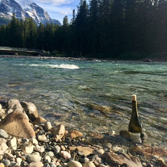 """Nature's wine fridge"" stock image"