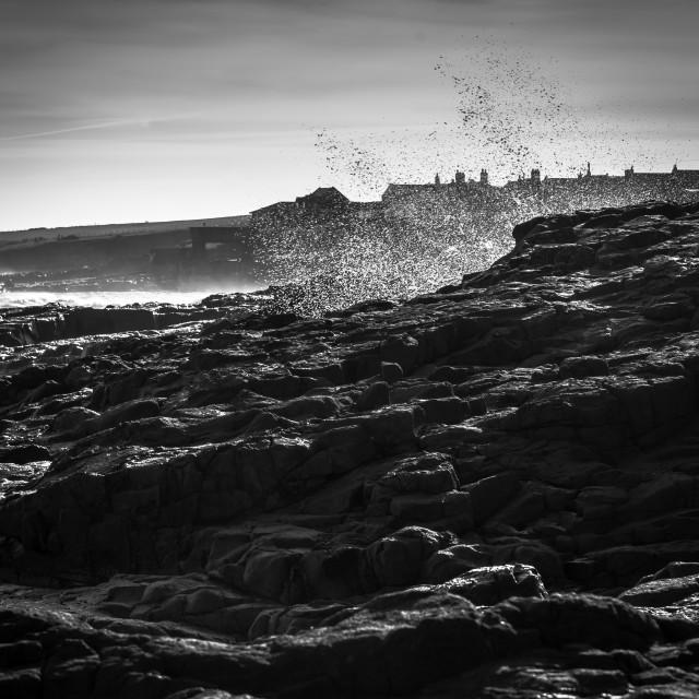 """""""Northumberland Coast"""" stock image"""
