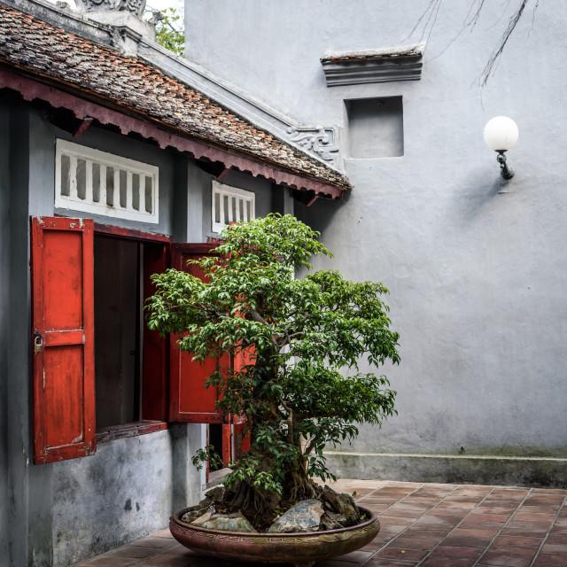 """Ngoc Son temple on Hoan Kiem lake, Hanoi, Vietnam"" stock image"