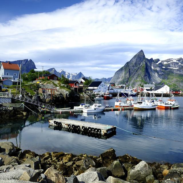 """Lofoten island harbour"" stock image"