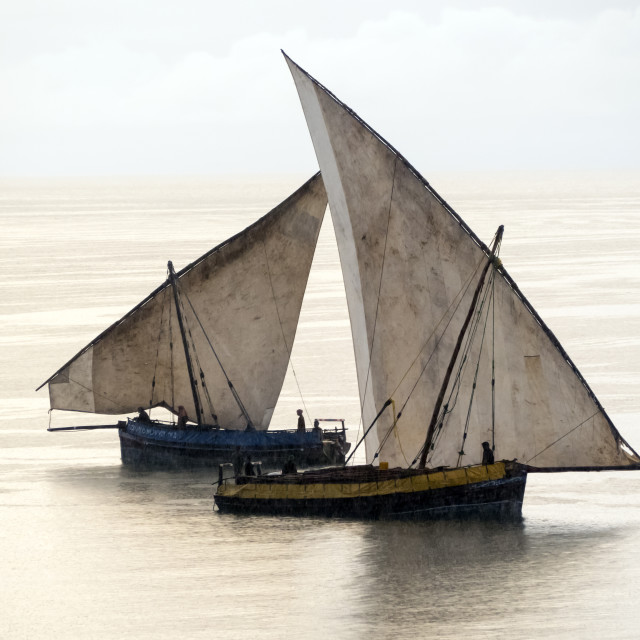 """Fishing dhows"" stock image"