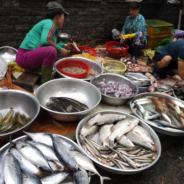 """Seafood street market, Saigon."" stock image"