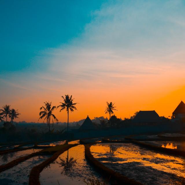 """Sunrise In Canggu - Bali"" stock image"