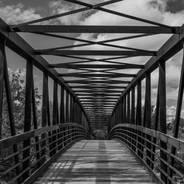 """""""Berg Park Bridge In Black And White"""" stock image"""