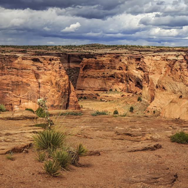 """""""Canyon De Chelly"""" stock image"""
