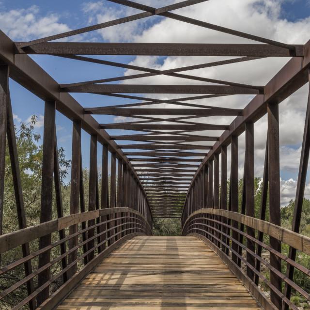 """Berg Park Bridge"" stock image"