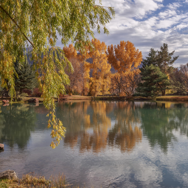 """Peaceful Pond"" stock image"