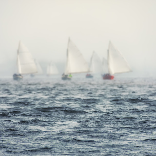 """Sailing boats regatta with white sails"" stock image"