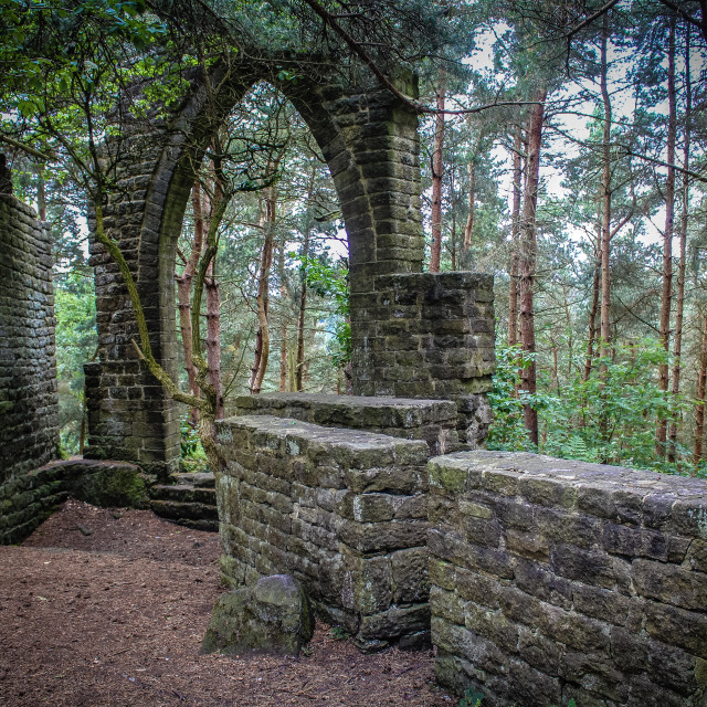 """Woodland Ruins"" stock image"