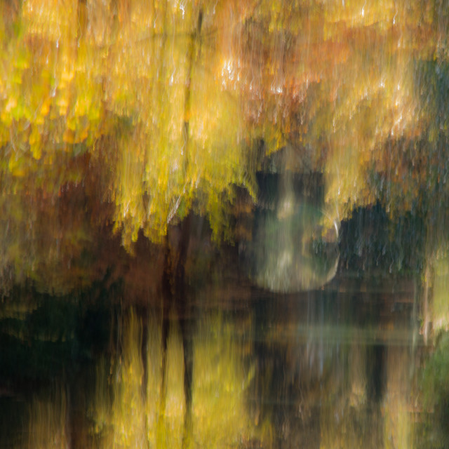 """""""Autumnal abstract"""" stock image"""