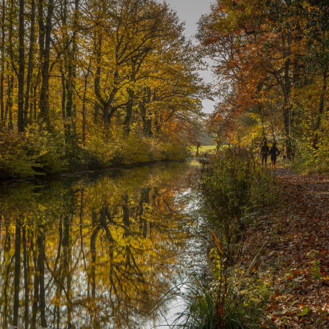 """""""Autumn walk"""" stock image"""
