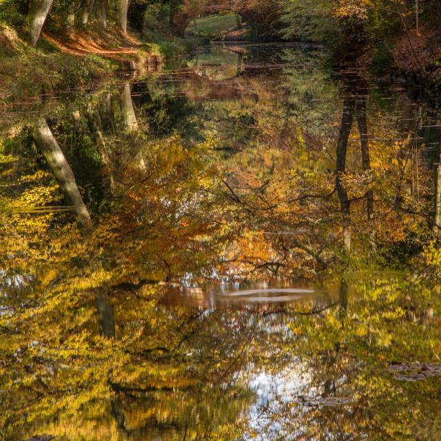"""Mirrored autumn"" stock image"