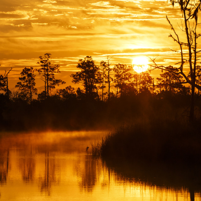 """""""Long Lens Sunrise on the Ochlocknee River"""" stock image"""