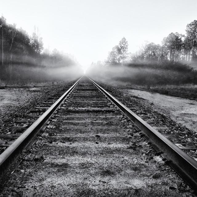 """Railroad Tracks into Fog"" stock image"