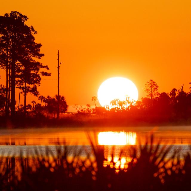"""Big Bend Sunrise"" stock image"