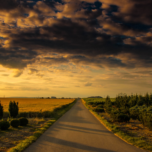 """A Lonely Road"" stock image"