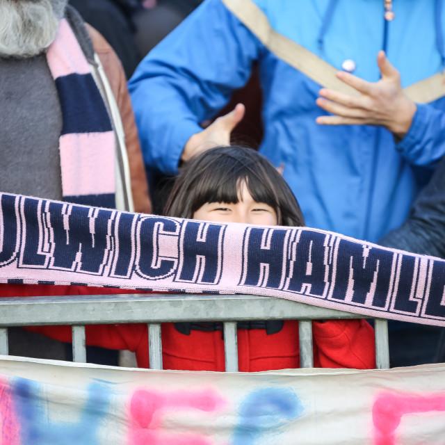 """DULWICH HAMLET!"" stock image"
