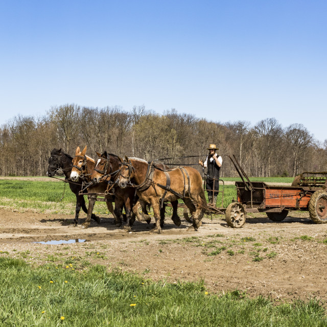 """working The Fields"" stock image"