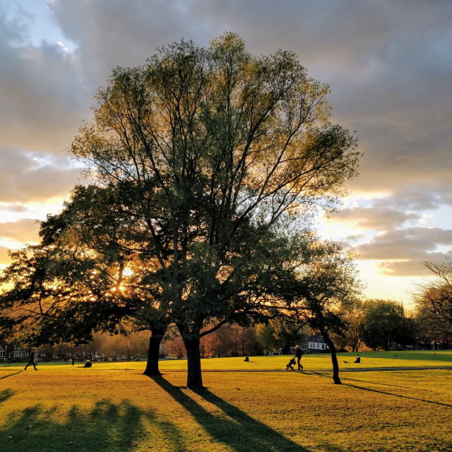 """""""Autumn sunset in South East London"""" stock image"""