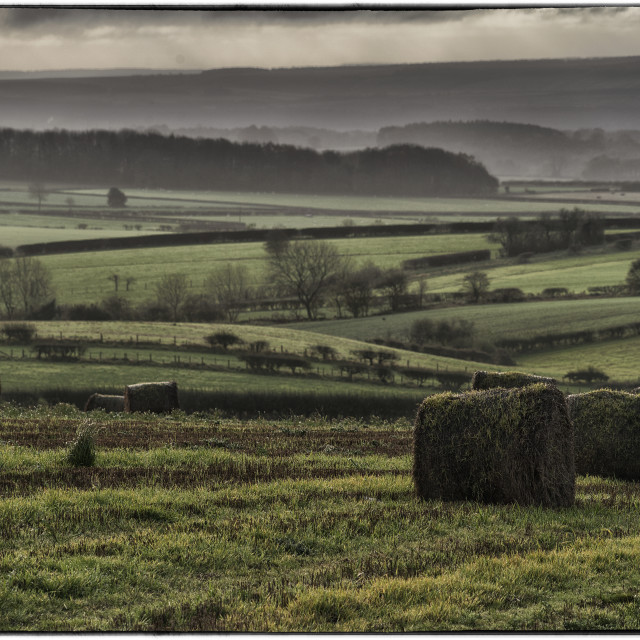 """""""Early morning, Yorkshire."""" stock image"""