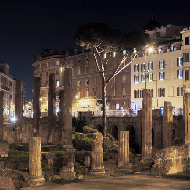 """archaeological area of Largo Argentina in Rome"" stock image"