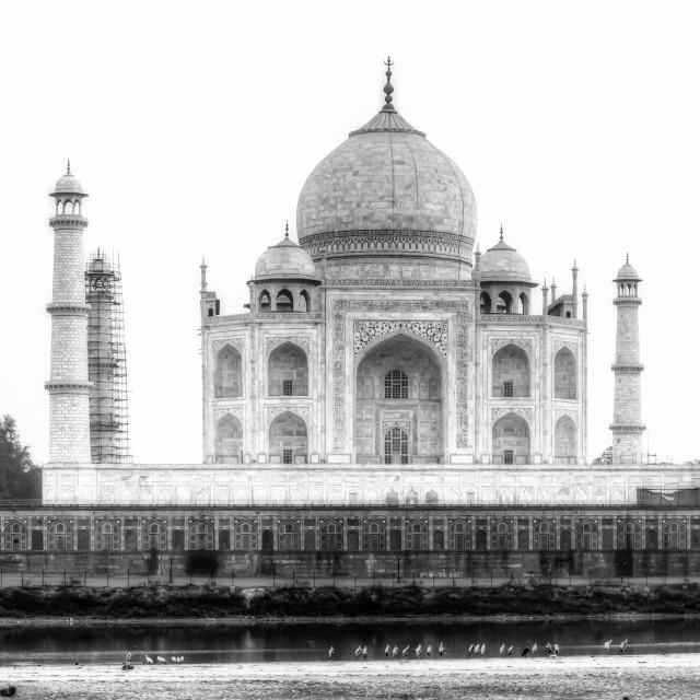 """Taj Mahal"" stock image"