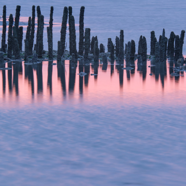 """""""Dawn Reflections at Baie d'Authie"""" stock image"""