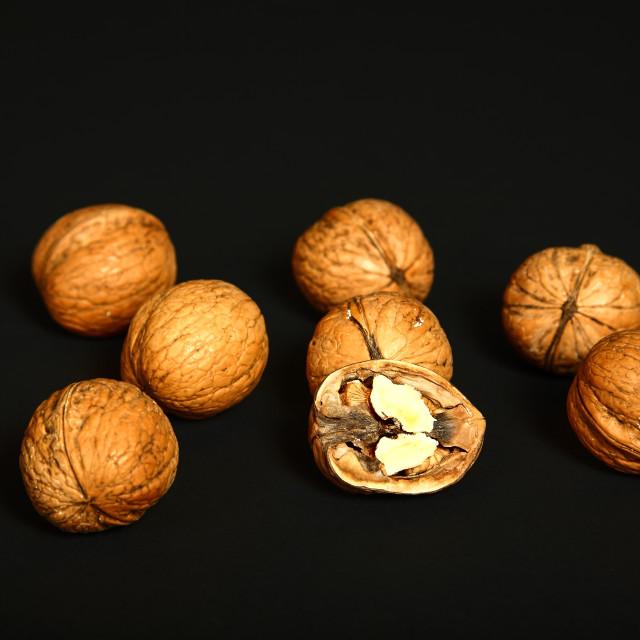 """Ripe walnuts"" stock image"