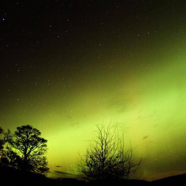 """aurora green arc rays"" stock image"