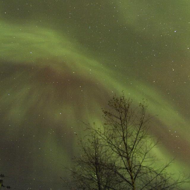 """faint aurora corona zenith"" stock image"