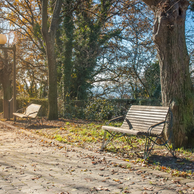 """Benches under the sun in autumn"" stock image"