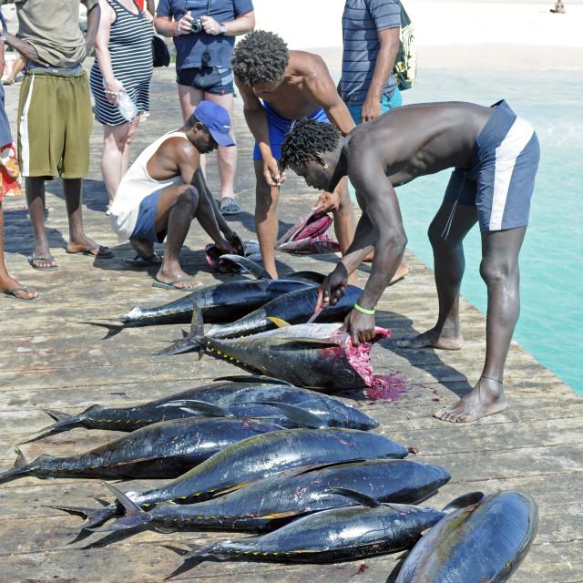 """Santa Maria Island of Sal Cape Verde Islands"" stock image"