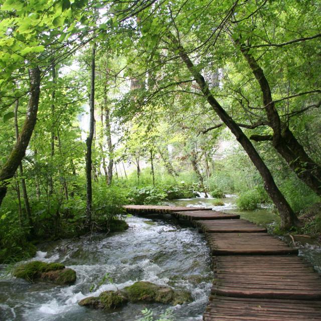 """Plitvice Lakes, Croatia."" stock image"