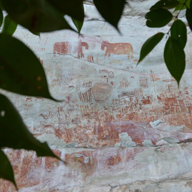 """Cave art"" stock image"