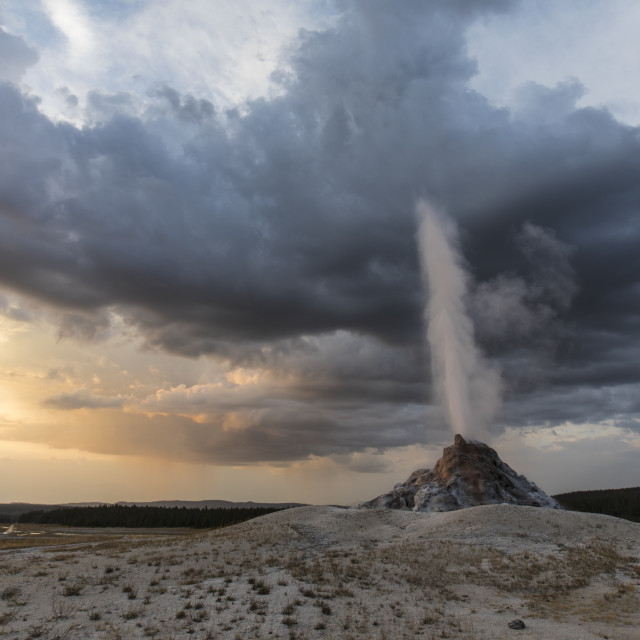"""""""White Dome Geyser"""" stock image"""