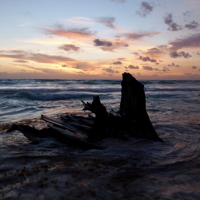 """""""Sunrise in Tulum"""" stock image"""