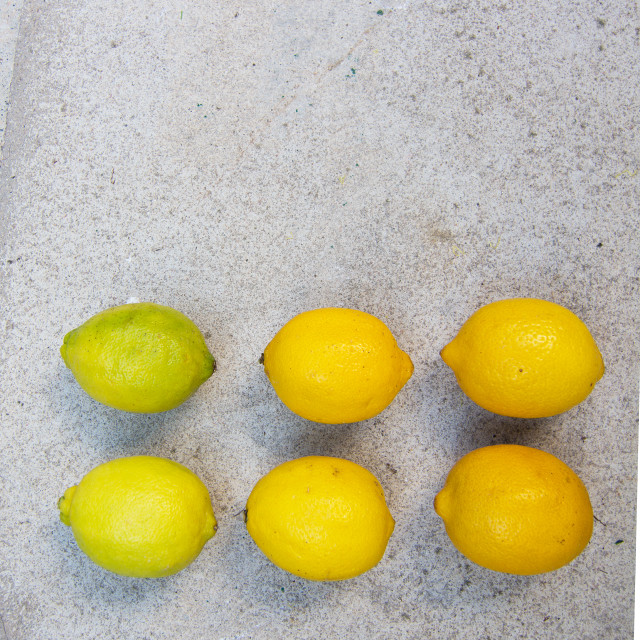 """Lemons in various stages of ripening"" stock image"