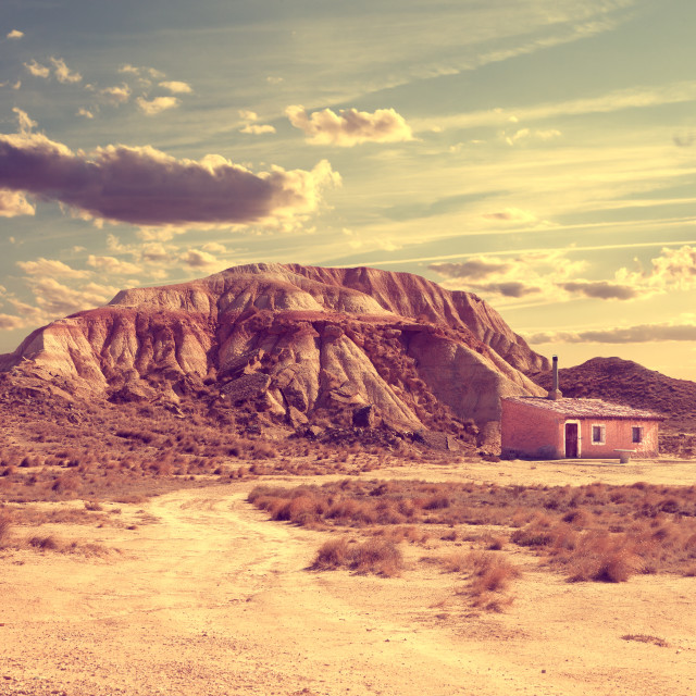 """""""Lifestyle.Solitary life in the desert"""" stock image"""