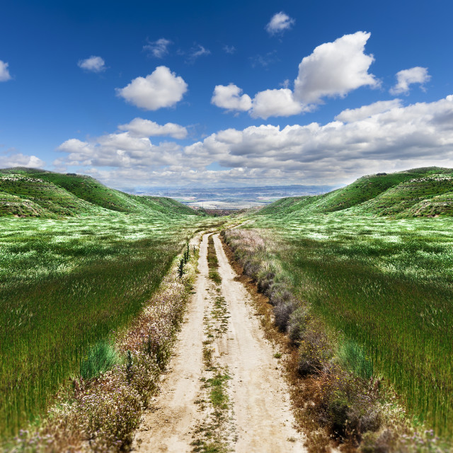 """""""Path through the green field"""" stock image"""