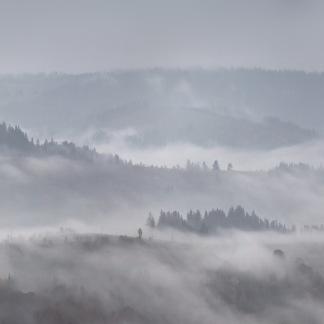 """Panorama of autumn rain and fog on the mountain hills."" stock image"
