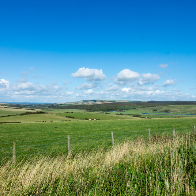 """""""South Downs and Cuckmere Valley"""" stock image"""