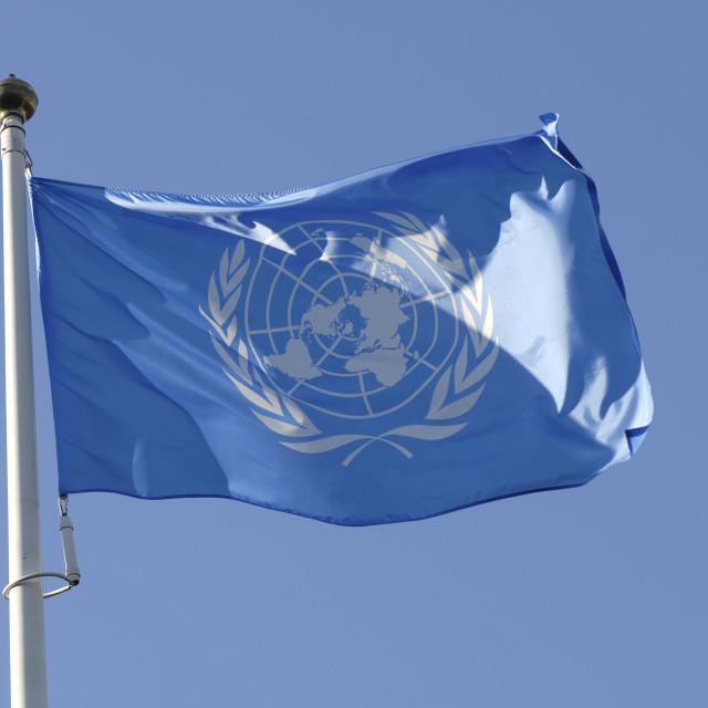 """""""The Hague UN Flag"""" stock image"""